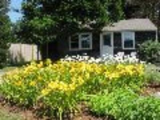 6046H 92742 - Brewster vacation rentals