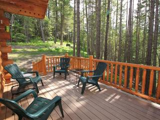 Enchanted River Cabin among the towering pines - Leavenworth vacation rentals