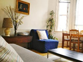 Central and bright London apartment - London vacation rentals