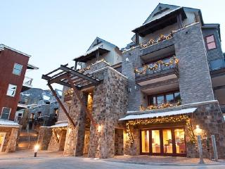 2 bedroom ski-in ski-out condo in Telluride - Telluride vacation rentals
