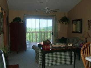 Branson Lakeview Condo - Branson vacation rentals