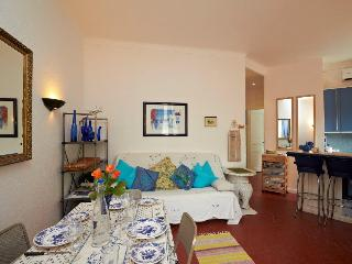 Charming 2 room apartment in old town of Cannes - Cannes vacation rentals
