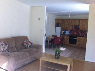 2 bedroom flat in the heart of Ardara - Ardara vacation rentals