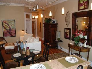 Fabulous 2BD/BA Loft in Downtown Asheville - Asheville vacation rentals