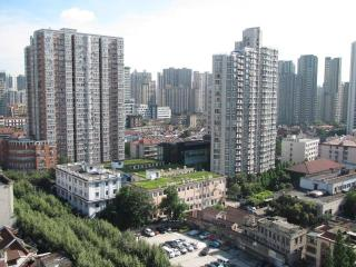 High-rise apartment in the center of Shanghai - Shanghai vacation rentals