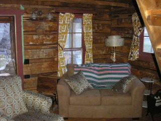 Wild Hare - Nathrop vacation rentals