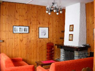 Louminouse villa by feet in the center,with garden - Courmayeur vacation rentals