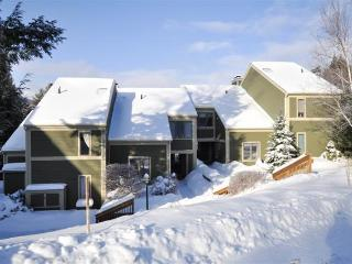Classic Vermont Woods Townhouse at Topnotch - Stowe vacation rentals