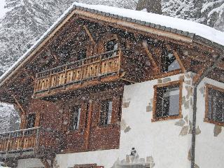 Charming traditionally built modern large chalet - Morzine vacation rentals