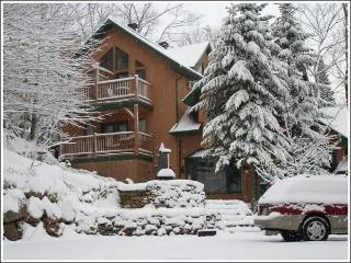 Large house facing  Mont Tremblant Ski Resort . - Mont Tremblant vacation rentals