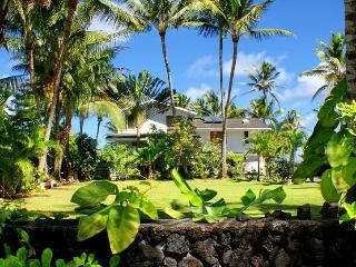 Hale 'O Naia - House of Dolphin - Pahoa vacation rentals