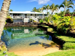 Clearpond Paradise - oceanfront with warm pond - Pahoa vacation rentals