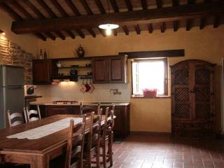 Villa appartments with pool in Appennini mountains - Acqualagna vacation rentals