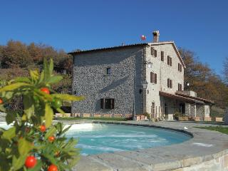 Villa appartments with pool and a beautiful views - Acqualagna vacation rentals