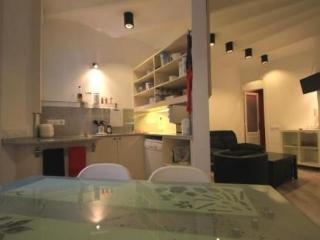 Apartment Sagrada Familia - Barcelona vacation rentals