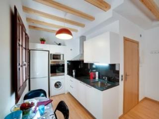 Barceloneta Apartment Sky - Barcelona vacation rentals