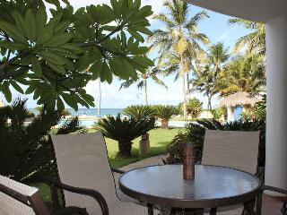 The only 2 Bedroom Oceanfront in Ocean Dream! - Cabarete vacation rentals