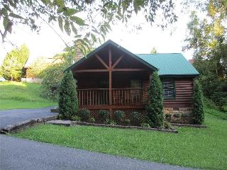 Smokies Cabin-Near Convention Center!  Book Today! - Sevierville vacation rentals