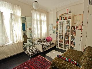 Artist's Flat/ Cosy/ GreatLocation - Istanbul vacation rentals