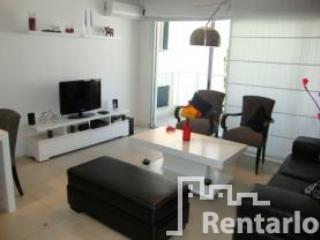 livingroom - Araoz y Cordoba (1072) - Capital Federal District - rentals