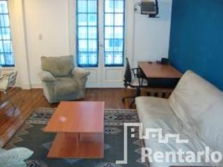 "livingroom - Libertad y Peron ""2"" (1185) - Capital Federal District - rentals"