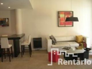 Posadas y Rodriguez Peña (781) - Capital Federal District vacation rentals