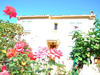 Spacious 3 dbl bed. with lovely gardens - Limoux vacation rentals