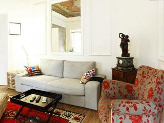 Akif 2/Cihangir-Historical Patterns - Istanbul vacation rentals