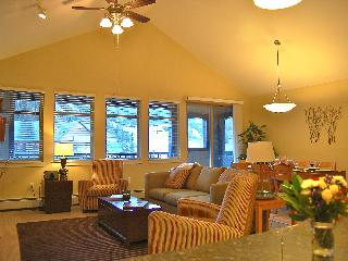 Walk to Ski Lift, WOW Penthouse in Fraser Crossing - Winter Park vacation rentals
