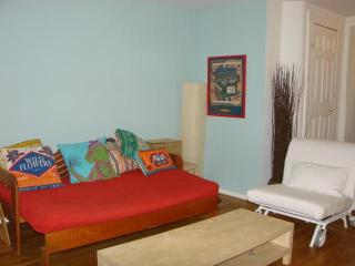 Large Garden Triplex in Historic Home near PRATT - Brooklyn vacation rentals