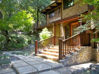 AMAZING Sonoma Mountain 2+ acre Retreat w/ hot tub - Sonoma vacation rentals