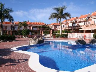 Luxury Apartment by the sea in Tenerife South - Costa del Silencio vacation rentals