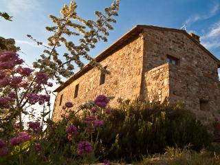 Beautiful apartment in Tuscan farmhouse ('Green') - Siena vacation rentals