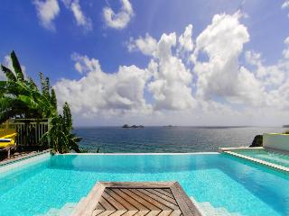 Luxurious privacy in St Barths, Villa Arc En Ciel - Anse Des Cayes vacation rentals