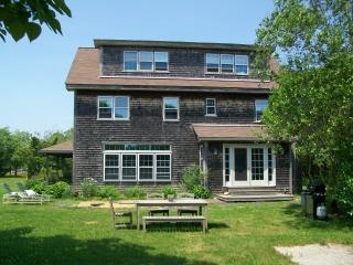 Private Back yard with patio - Spacious WT Home on Bike Path - West Tisbury - rentals