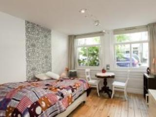 Nice comfortable room w private facilities AM 013 - Image 1 - Amsterdam - rentals