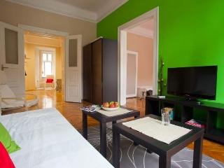 EXCELLENT APARTMENT IN THE CENTER - Belgrade vacation rentals