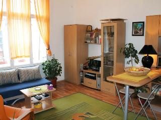 COZY APARTMENT IN CENTER, STRAHINJICA BANA STREET - Belgrade vacation rentals