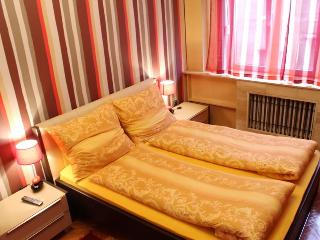 BEAUTIFUL APARTMENT IN THE CENTER OF BELGRADE - Belgrade vacation rentals