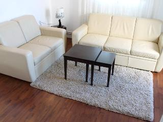2 BEDROOM APARTMENT WITH A WONDERFUL VIEW - Belgrade vacation rentals