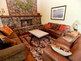 Gorgeous Home near the slopes - Snowmass Village vacation rentals