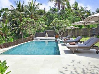 Villa Pandan - Spacious 4 bedroom villa in Canggu - Seminyak vacation rentals