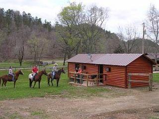The Cabin at Panther Valley Ranch - Image 1 - Hot Springs - rentals