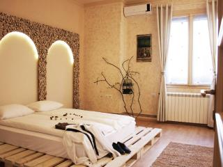 2 Bedroom Apartment PEARL FOREST near Kalemegdan - Belgrade vacation rentals