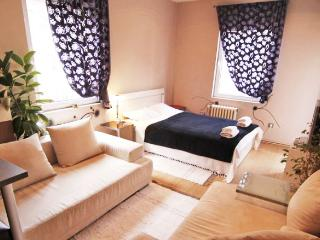 Studio METROPOL no. 1 near the Saint Sava temple! - Belgrade vacation rentals
