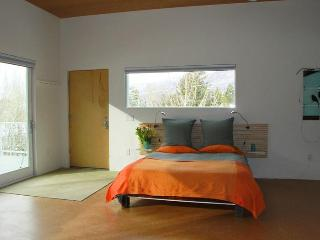 Gorgeous new modern studio in town! - Aspen vacation rentals