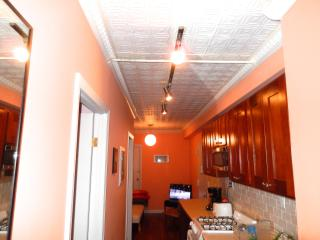 FuNKaDELiC (3 BEDROOM)~ DOWNTOWN - New York City vacation rentals