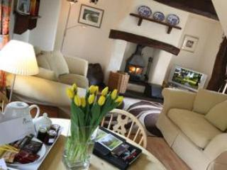 Snowdrop- Delightful, furnished 2 bedroom cottage - Boncath vacation rentals