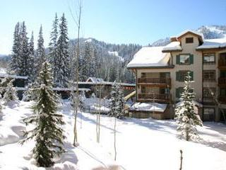 Quiet, comfortable Solitude condo.  Best Price! - Solitude vacation rentals