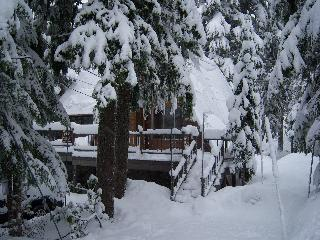 TLC Mt Hood Cabin Sleep 8-10 Great 4 family friend - Government Camp vacation rentals